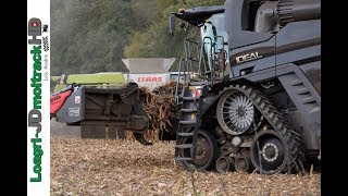 Fendt IDEAL 8T VS Claas Lexion 770 - Corn Harvest 2018 !