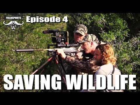 Saving Wildlife – Fieldsports Africa, episode 4