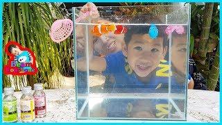 น้องบีม   รีวิวของเล่น EP136   ใส่สีในน้ำให้ปลาการ์ตูน Toys