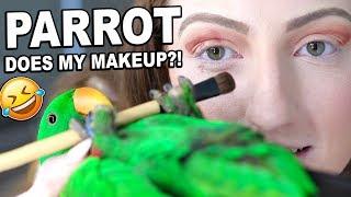 MY BIRD PICKS MY MAKEUP CHALLENGE!!! *disaster*