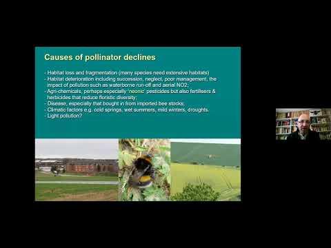 , title : 'DLL: Understanding & Promoting Pollinators incl. Hedgerow Management for Pollinators by Steven Falk