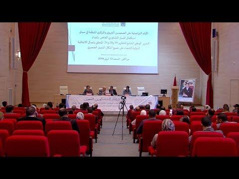 العرب اليوم - شاهد: خبراء المجتمع المدني بالمغرب يؤكدون أن لا تنمية بدون المساواة بين الجنسين
