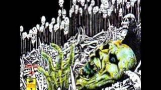 Rebel D Punk - Chamarras negras (El Punk No Esta Muerto Vol.2)