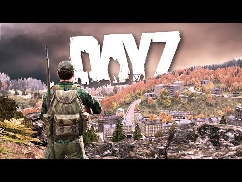 Disturbing a HORNETS NEST in DayZ...