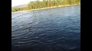 Рыбалка на красноярских реках и озерах