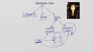 Electrolytic Cells – Grade 12