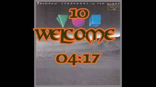 10 Peter Baumann   Strangers In The Night   Welcome   04;17