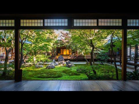 Japanese beauty 京都「建仁寺、高台寺」