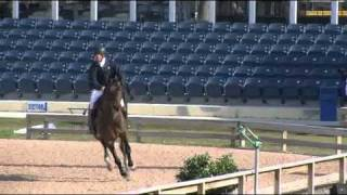 Video of BIG STAR riden by NICK SKELTON from ShowNet! - YouTube