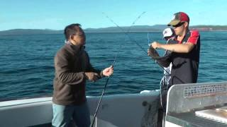 preview picture of video 'Fishing in Merimbula 26 Dec 13'