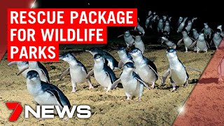 Coronavirus: Australia's wildlife parks have received funds to stay in operation | 7NEWS
