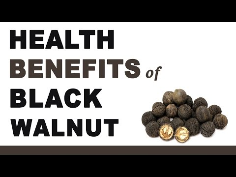 Video Health Benefits of Black Walnut