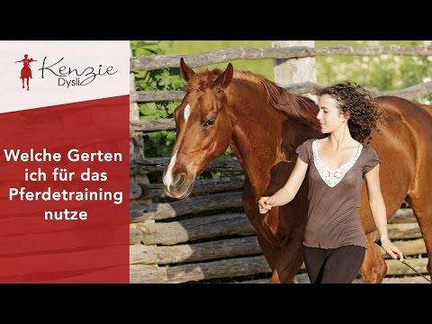 Welche Gerten ich für das Pferdetraining nutze