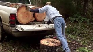 How to Cut & Load Big Firewood