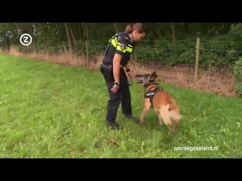 'Een politiehond is een wapen'