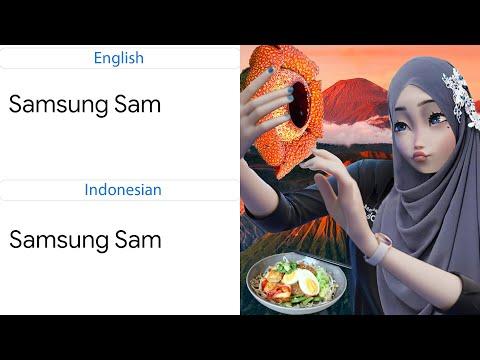 Samsung Sam in different languages meme (Part 2)