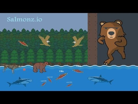 Salmonz.io Video 1