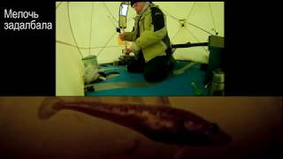 Рыбалка на железных воротах. сухое море