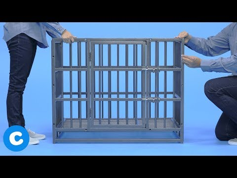 Dog Kennel in Coimbatore, Tamil Nadu | Dog Kennel Price in Coimbatore