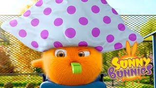 Cartoons for Children | BUNNY TENNIS | SUNNY BUNNIES | Funny Cartoons For Children