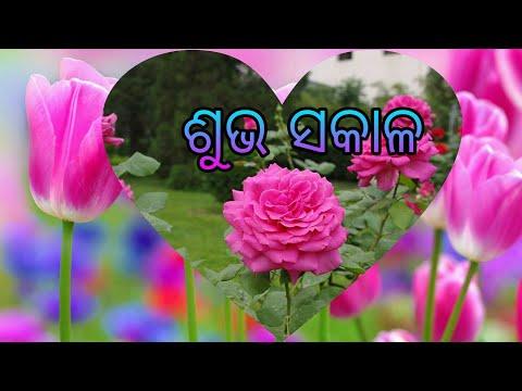 Good Morning Subha Sakala смотреть онлайн на Hahlife