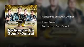 Radicamos en South Central - Fuerza Regida