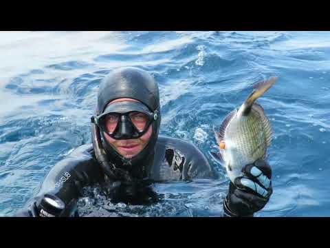 Fotografia che pesca in Narach