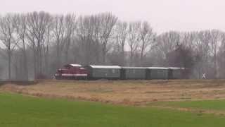 preview picture of video 'Döllnitzbahn auf dem Feld vor Naundorf'