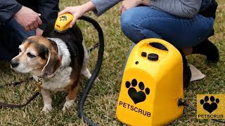 Top 7 Amazing Gadgets 2018 for your Pet Must Have