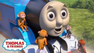 Animals Around The World   Big World! Big Adventures!   Thomas & Friends