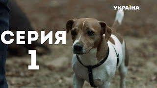 Год собаки (Серия 1)