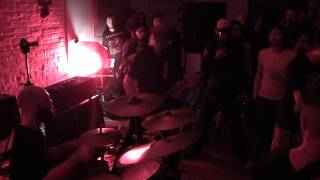Wolbachia - Scratching the Surface - Live at The Negative Space