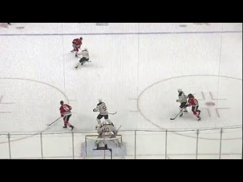 Gotta See It: Blackhawks' Forsling walks the line and wins it in OT