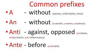 Medical terms - common prefixes