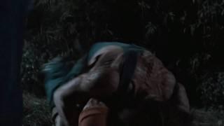 Hatchet II (2010) Video