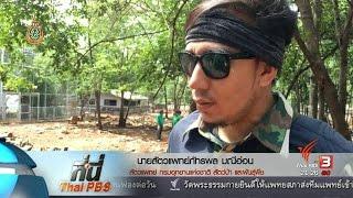 ที่นี่ Thai PBS - ที่นี่ Thai PBS : หาหลักฐาน วัดหลวงตาบัวฯ เชื่อมโยงค้าสัตว์ป่า