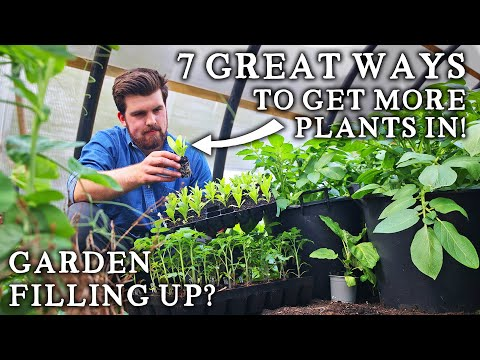 Garden Filling Up? Here's How You Can Fit in More Crops