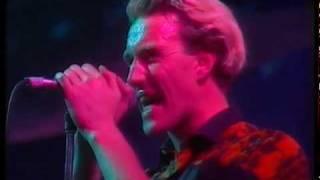 The Armoury Show - Avalanche, La Edad de Oro, Madrid 1984