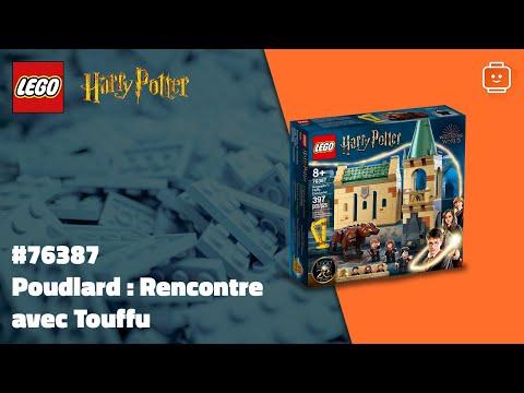 Vidéo LEGO Harry Potter 76387 : Poudlard : Rencontre avec Touffu