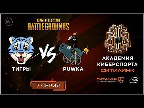 💥ТИГРЫ vs PUWKA! Реалити-шоу по мотивам PUBG I 7 СЕРИЯ I Академия киберспорта Ситилинк (16+)