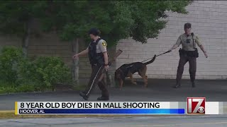 8-year-old boy killed, girl wounded in mall shooting