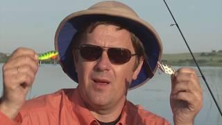 Как ловят на блесну цикада