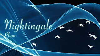 [자작곡] Nightingale (나이팅게일)