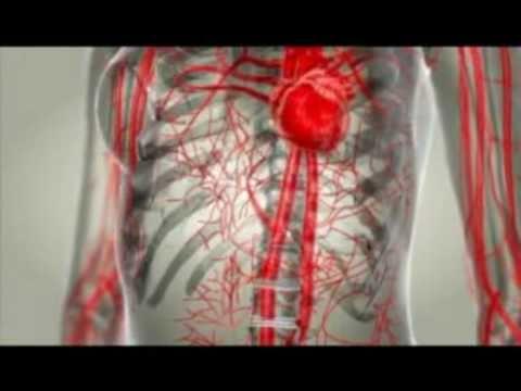 Natūralūs produktai širdies sveikatai