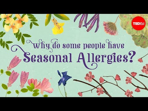 Why Some People Have Seasonal Allergies And Others Don't