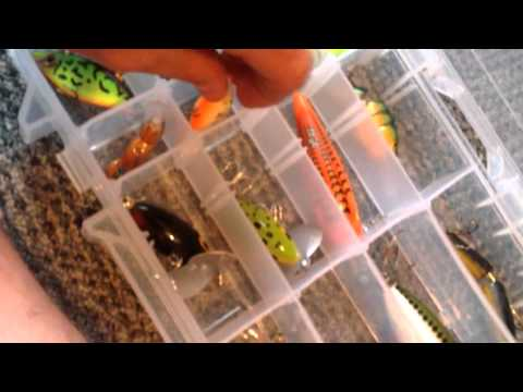 Best bass fishing tackle setup