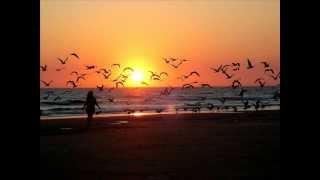 Eltonnick feat. NaakMusiQ - Reach The Light