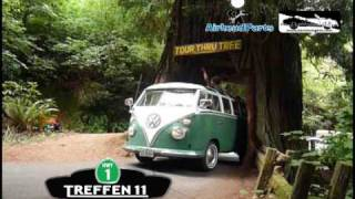 Air-cooled VW's drive through a Redwood tree!