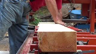 A surprise while cutting Eastern White Pine with the