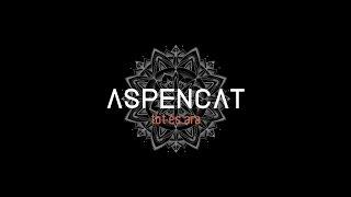 Aspencat & Mai - Trenca Els Miralls (Valencià)